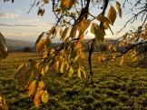 Herbst in Allendorf