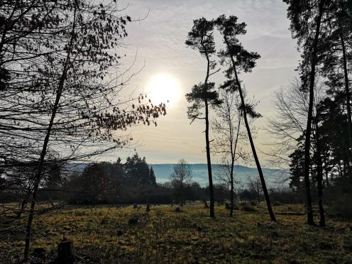 Winter in Allendorf