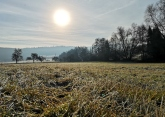 Allendorf Winter 2020 (4)
